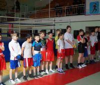 Тюменский Фонд развития бокса - официальный сайт - Фотолента - ТМ в Ишиме, 09.04.2016г.